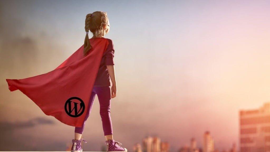 Wordpressテーマの選び方で光を見いだした女の子